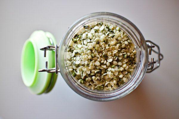 Sementes de cânhamo. fonte natural de ácidos graxos essenciais ômega3