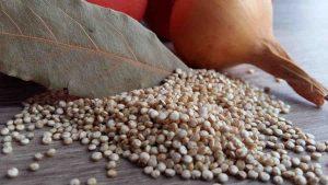 Quinoa en granos